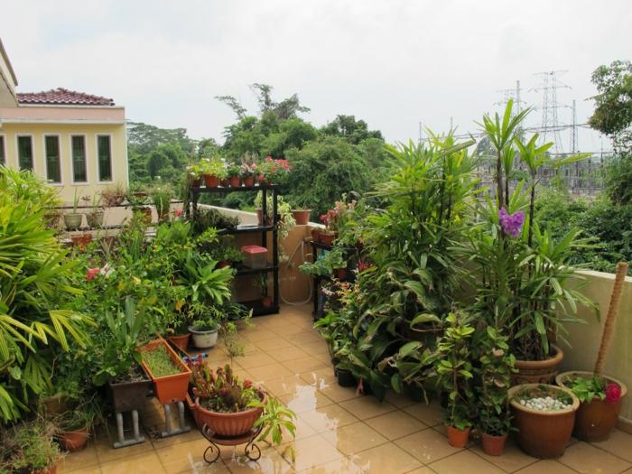 bepflanzung- dachterrasse-boden-flisen-und-blumen-töpfer