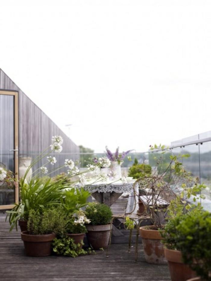 bepflanzung- dachterrasse-glas-und-holz