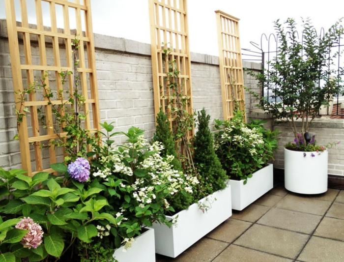 bepflanzung- dachterrasse-und-balkon