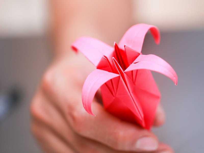 blumen falten kinder origami rosa lilie fertig