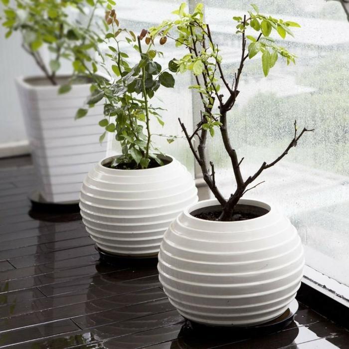 deko- vasen-runde-modelle