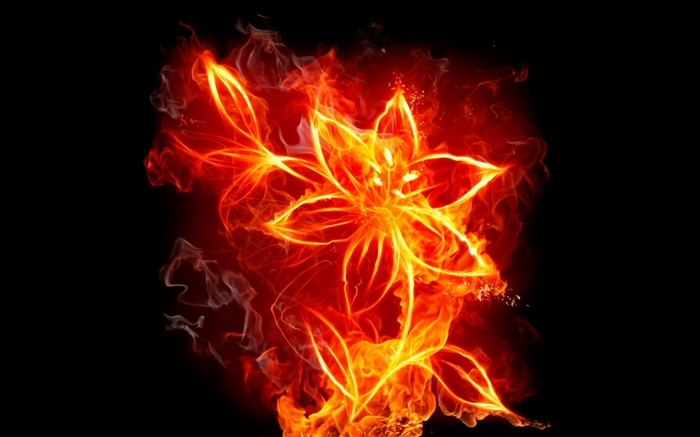 feuer-wallpaper-interessante-blume