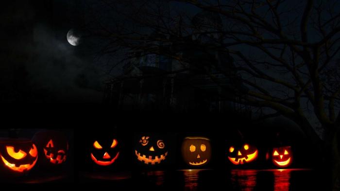 halloween-kürbisse-dunkle-nacht