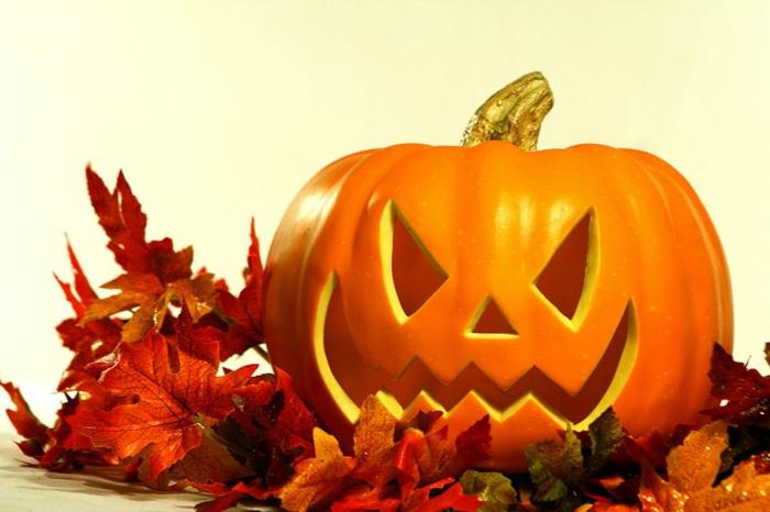 halloween-kürbisse-viele-baumblätter