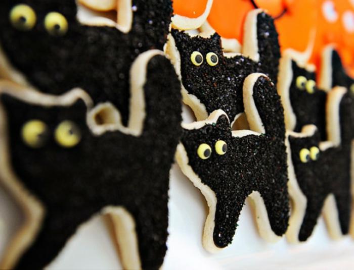 halloween-süßigkeiten-katzen-