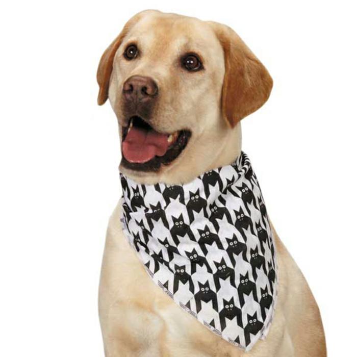 halstuch-für-hund-modell-in-schwarz-weißer-hintegrund