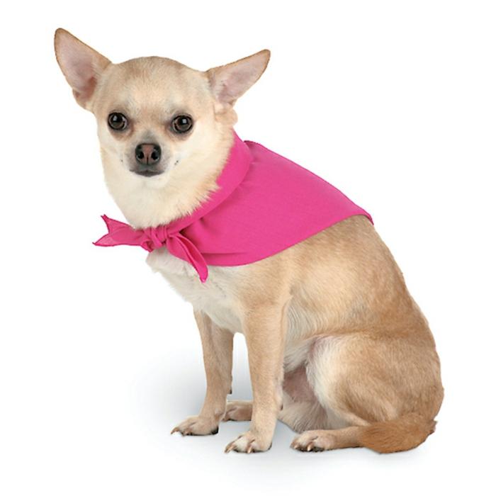 halstuch-für-hund-rosige-farbe-hintergrund-in-weiß