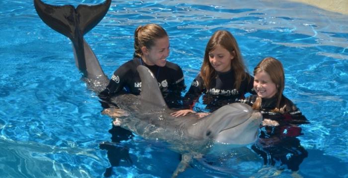 mit-delfinen-schwimmen-drei-kinder