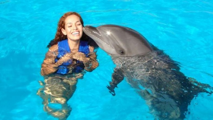 mit-delfinen-schwimmen-ein-glückliches-mädchen