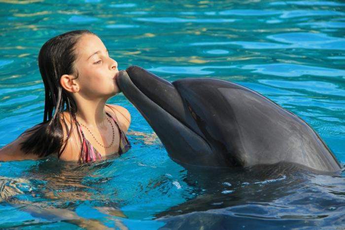 mit-delfinen-schwimmen-ein-kind-im-wasser