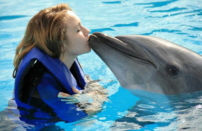 mit-delfinen-schwimmen-eine-frau-küsst-das-tier