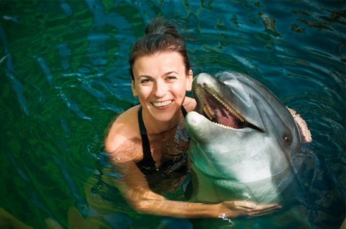 mit-delfinen-schwimmen-foto-von-oben-genommen
