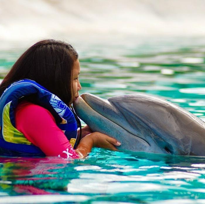 mit-delfinen-schwimmen-inspirierendes-foto