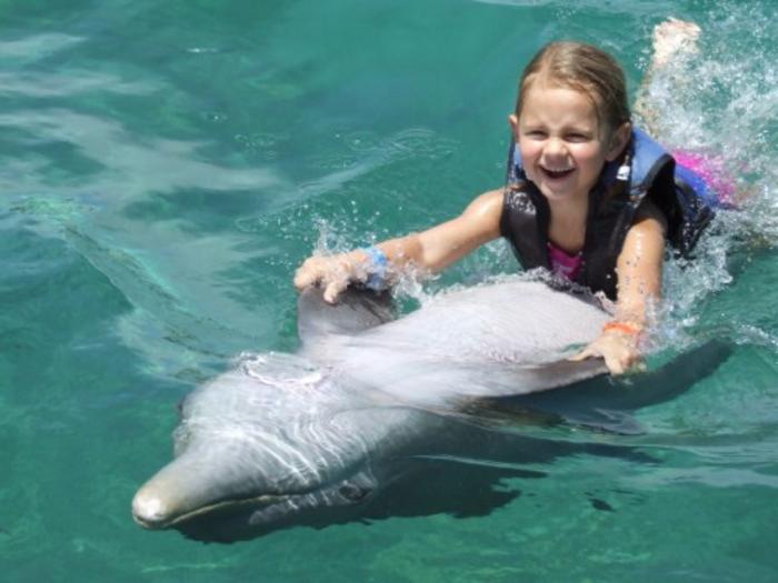 mit-delfinen-schwimmen-spaß-haben