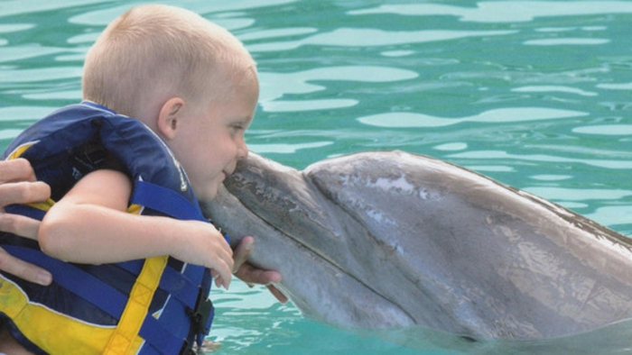 mit-delfinen-schwimmen-super-schönes-foto-kleines-baby