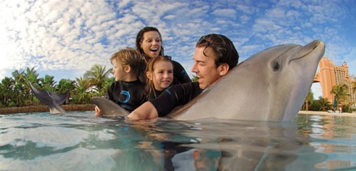 mit-delfinen-schwimmen-tolle-familie