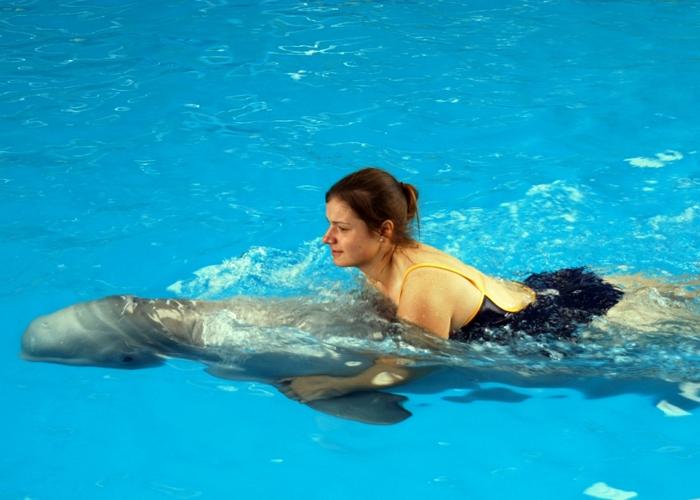 spaß im wasser haben - eine frau schwimmt neben einem delfin