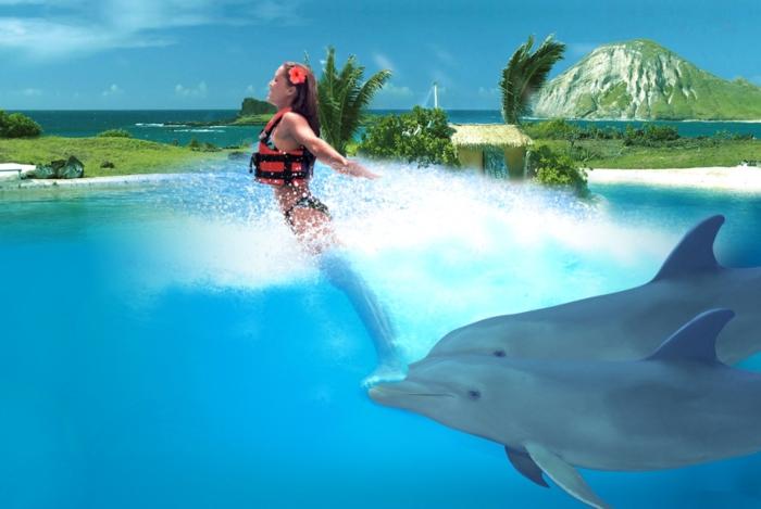 mit-delfinen-schwimmen-unglaubliches-foto