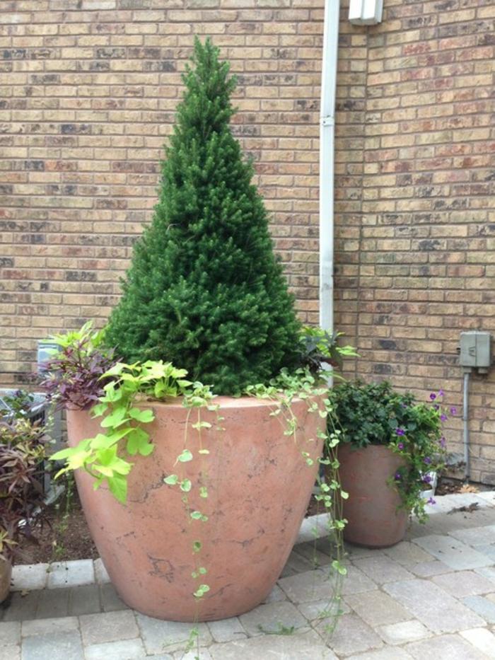 pflanzkübel-aus-beton-aristokratisches-aussehen