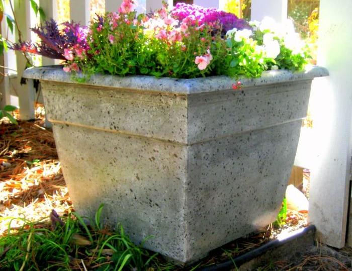 pflanzkübel-aus-beton-bunte-blumen
