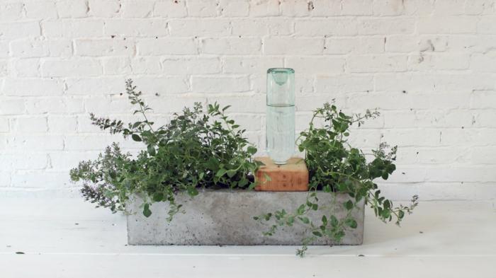 pflanzkübel-aus-beton-einfache-und-sehr-schön