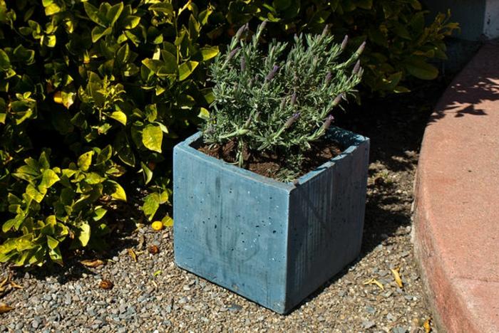 pflanzkübel-aus-beton-garten-gestaltung