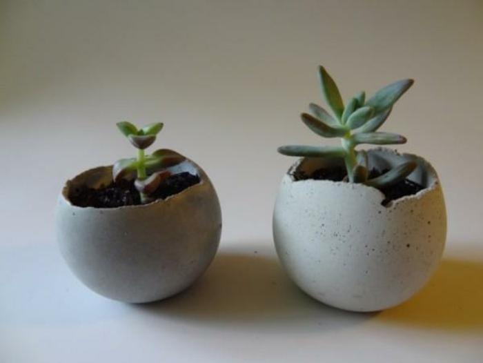 pflanzkübel-aus-beton-originelle-designs-in-rund