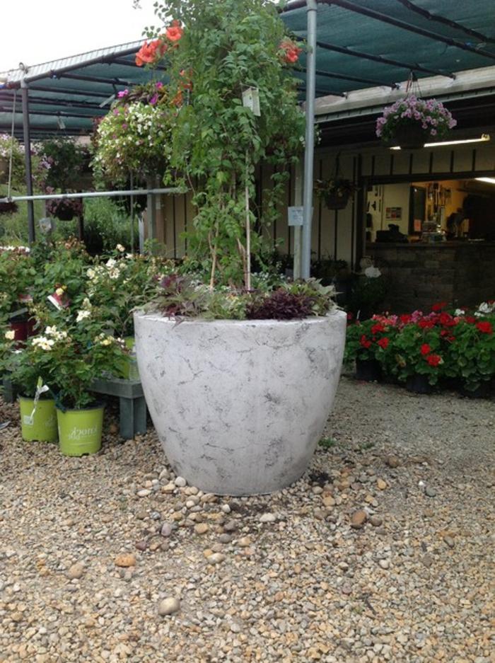 pflanzkübel-aus-beton-rustikaler-look
