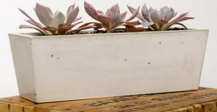 pflanzkübel-aus-beton-schönes-weißes-modell