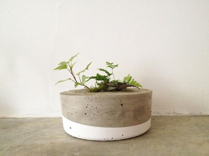 pflanzkübel-aus-beton-super-effekt-weiße-wand
