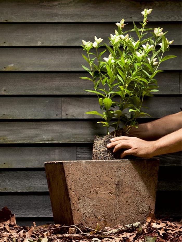 pflanzkübel-aus-beton-super-interessante-gestaltung