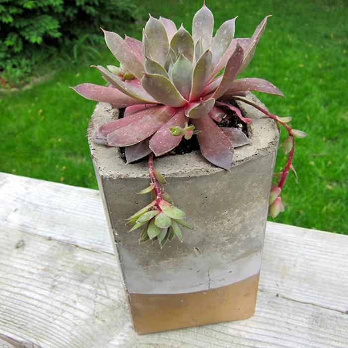 pflanzkübel-aus-beton-verblüffende-idee