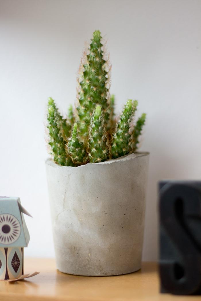 pflanzkübel-aus-beton-weiße-wand-dahinter