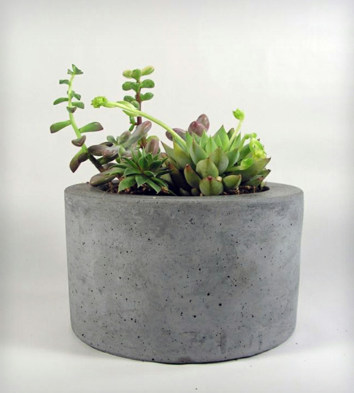 pflanzkübel-aus-beton-weißer-hintergrund