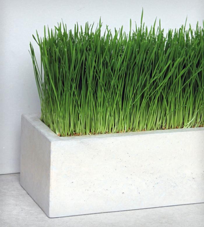 pflanzkübel-aus-beton-weißes-modell