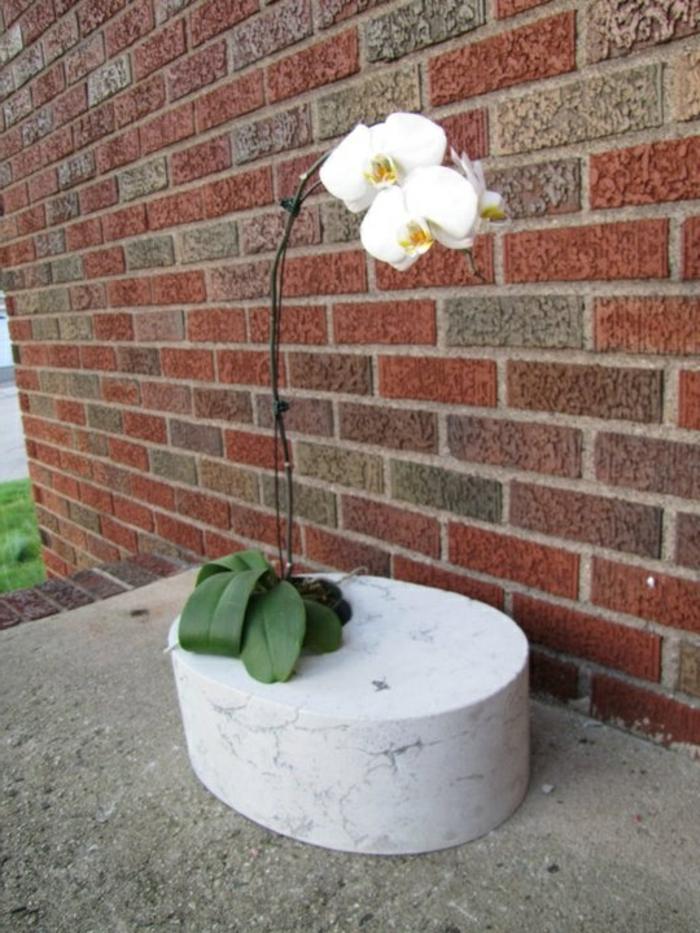 pflanzkübel-aus-beton-ziegelwand
