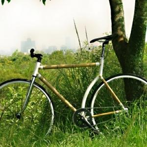Das Bambus Fahrrad - Zukunft im Überblick