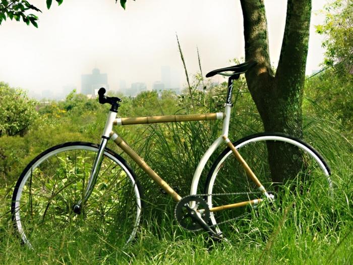 weißes-Bambus-Fahrrad-natürlicher-Rahmen-Natur-Baum-Spaziergang