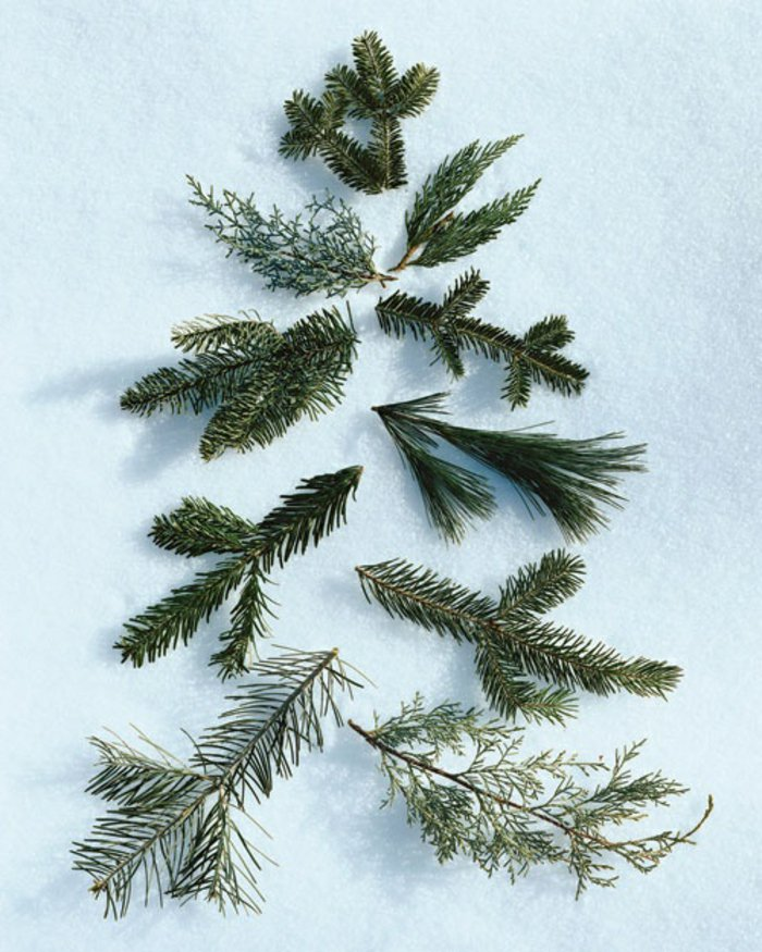 weihnachtlich-dekorieren-Erlenzweige-sympatisch-kokett