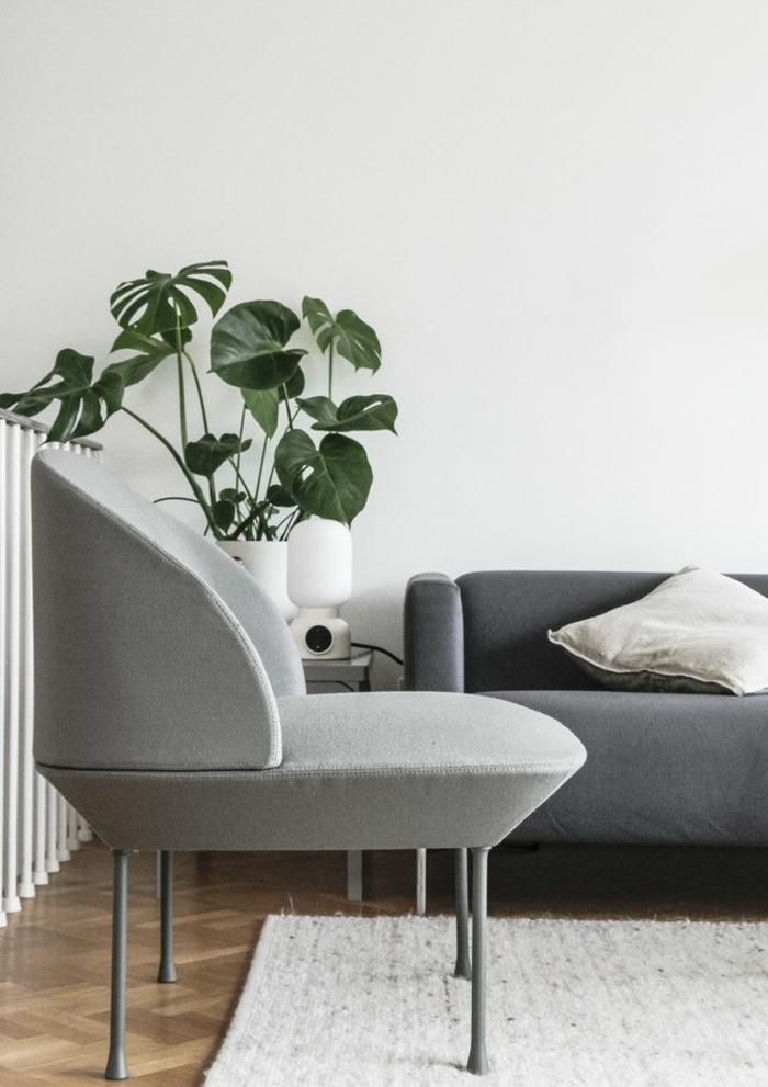 Wohnzimmer-gemütliches-Interieur-minimalistische-Einrichtung-Topfpflanze-graues-Sofa-Loungesessel
