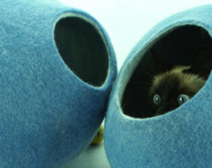 katzen zubehör -Siamkatze-blaue-betten