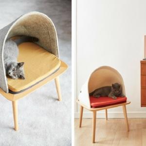 Katzenzubehör - einige Ideen für cooles Katzenbett
