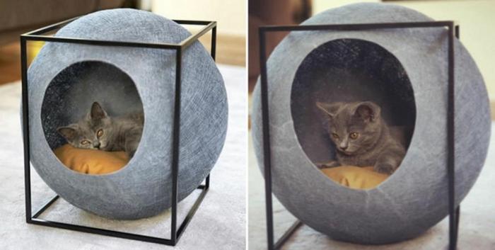 katzen zubehör-die-sich-die-katzen-wünschen