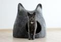 Katzenzubehör – einige Ideen für cooles Katzenbett