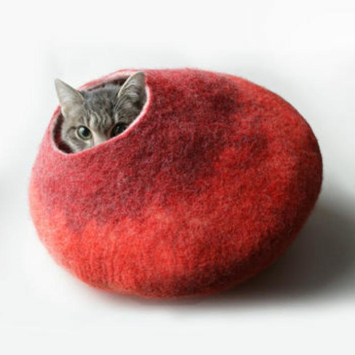 katzen zubehör-in-rot-für-ihre-katze