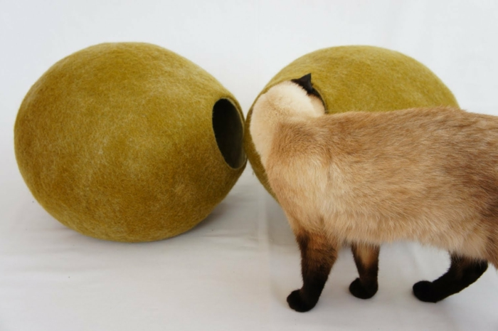 katzen zubehör-neugierige-siamkatze