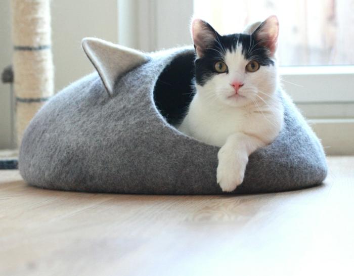 katzen zubehör-schwarz-weiße-katze