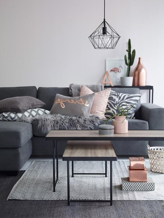 modernes-graues-Interieur-viele-Kissen-Kupfer-Oberflächen-Kaktus-in-Topf-Designer-Leuchte