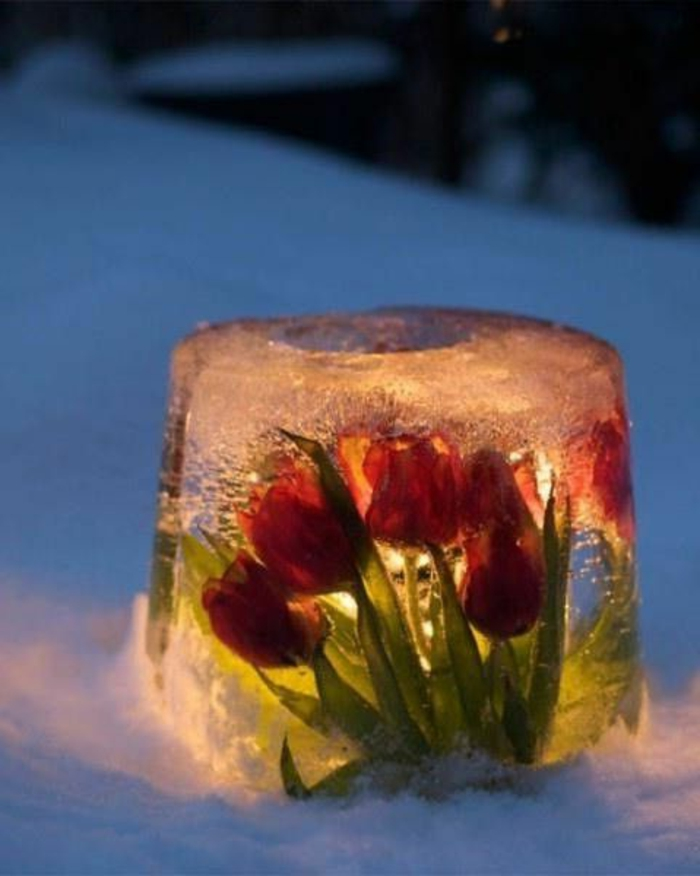 originelle-Winter-Deko-Idee-Eislaterne-gefrorene-Tulpen-flammenlose-Kerzen