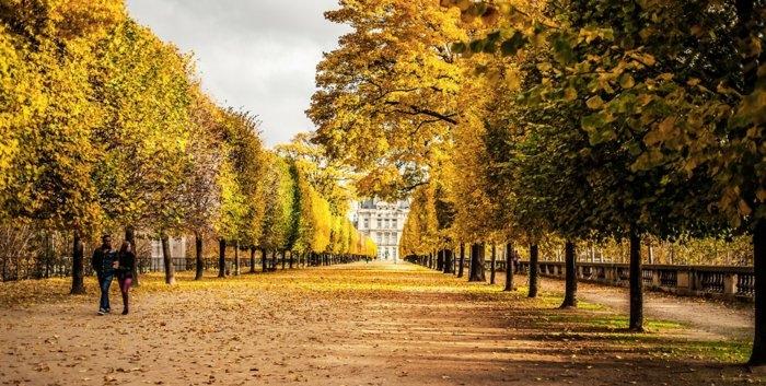 paris-urlaub-tipps-spazieren-im-park-im-herbst